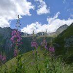Bikewoche_Mont_Blanc_2011_018