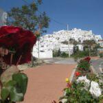 Veloferien_Andalusien_2014_099